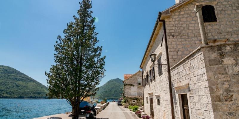 Montenegro Coast web design